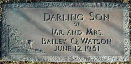 WATSON, DARLING SON - Faulkner County, Arkansas | DARLING SON WATSON - Arkansas Gravestone Photos