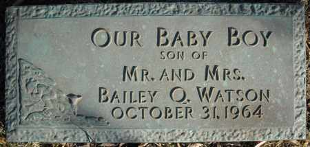 WATSON, OUR BABY BOY - Faulkner County, Arkansas | OUR BABY BOY WATSON - Arkansas Gravestone Photos