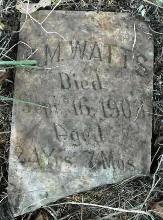 WATTS, S.M. - Faulkner County, Arkansas | S.M. WATTS - Arkansas Gravestone Photos