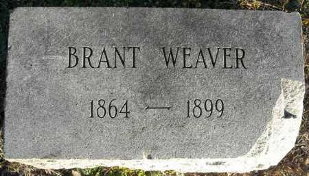 WEAVER, BRANT - Faulkner County, Arkansas | BRANT WEAVER - Arkansas Gravestone Photos
