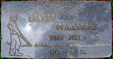 WILLIAMS, ERNEST - Faulkner County, Arkansas | ERNEST WILLIAMS - Arkansas Gravestone Photos