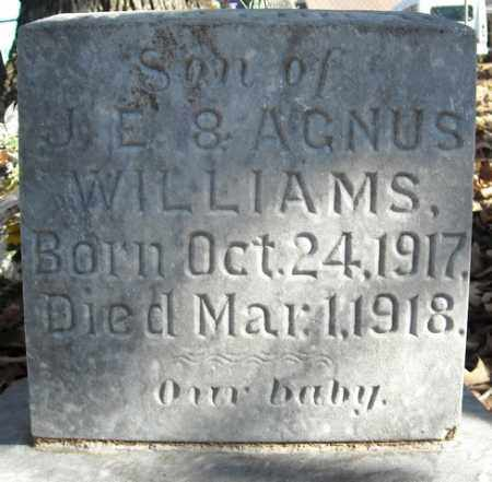 WILLIAMS, SON - Faulkner County, Arkansas | SON WILLIAMS - Arkansas Gravestone Photos