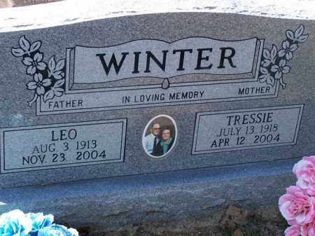 WINTER, TRESSIE - Faulkner County, Arkansas | TRESSIE WINTER - Arkansas Gravestone Photos