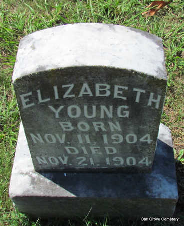 YOUNG, ELIZABETH - Faulkner County, Arkansas | ELIZABETH YOUNG - Arkansas Gravestone Photos