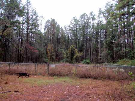 *OVERVIEW,  - Franklin County, Arkansas    *OVERVIEW - Arkansas Gravestone Photos