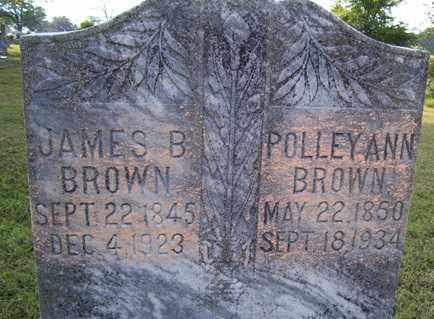 BROWN, POLLEY ANN - Franklin County, Arkansas | POLLEY ANN BROWN - Arkansas Gravestone Photos