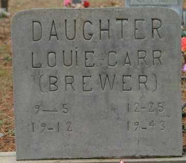 CARR, LOUIE - Franklin County, Arkansas | LOUIE CARR - Arkansas Gravestone Photos