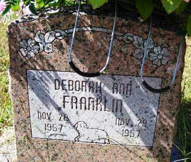 FRANKLIN, DEBORAH ANN - Franklin County, Arkansas | DEBORAH ANN FRANKLIN - Arkansas Gravestone Photos