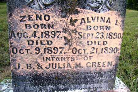 GREEN, ALVINA L - Franklin County, Arkansas | ALVINA L GREEN - Arkansas Gravestone Photos