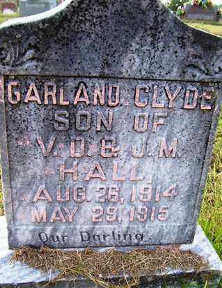 HALL, GARLAND CLYDE - Franklin County, Arkansas | GARLAND CLYDE HALL - Arkansas Gravestone Photos
