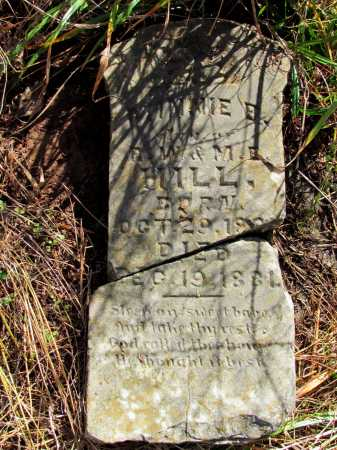 HILL, MINNIE B - Franklin County, Arkansas | MINNIE B HILL - Arkansas Gravestone Photos