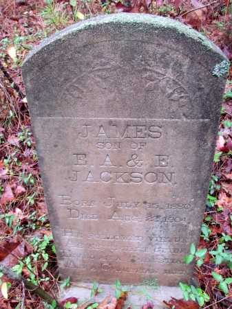 JACKSON, JAMES - Franklin County, Arkansas | JAMES JACKSON - Arkansas Gravestone Photos