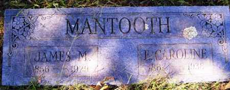 MANTOOTH, E. CAROINE - Franklin County, Arkansas | E. CAROINE MANTOOTH - Arkansas Gravestone Photos