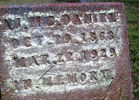 MCDANIEL, A  J - Franklin County, Arkansas | A  J MCDANIEL - Arkansas Gravestone Photos