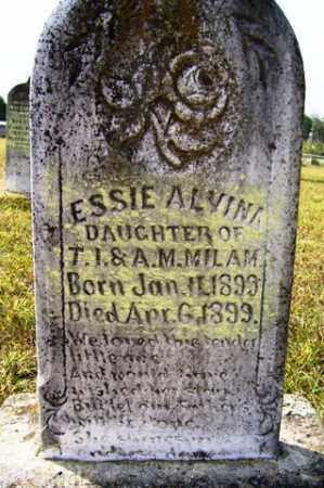 MILAM, ESSIE ALVINA - Franklin County, Arkansas | ESSIE ALVINA MILAM - Arkansas Gravestone Photos