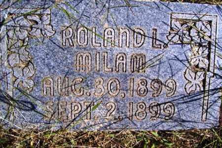 MILAM, ROLAND  L - Franklin County, Arkansas | ROLAND  L MILAM - Arkansas Gravestone Photos