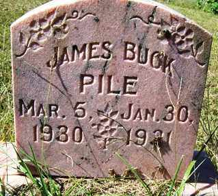 PILE, JAMES BUCK - Franklin County, Arkansas | JAMES BUCK PILE - Arkansas Gravestone Photos