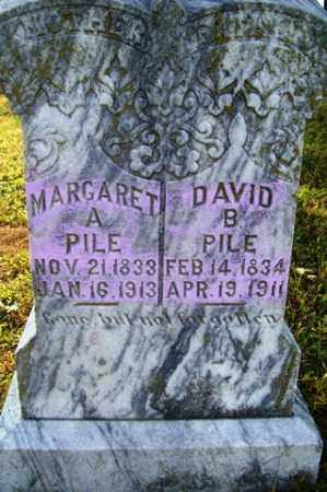 PILE, DAVID B. - Franklin County, Arkansas | DAVID B. PILE - Arkansas Gravestone Photos