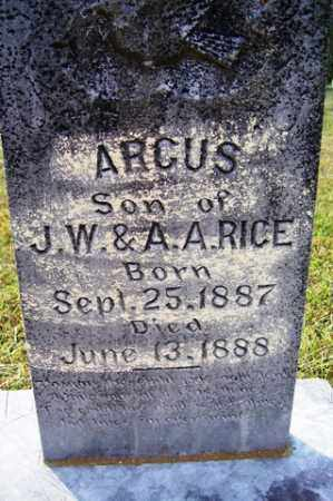 RICE, ARGUS - Franklin County, Arkansas | ARGUS RICE - Arkansas Gravestone Photos