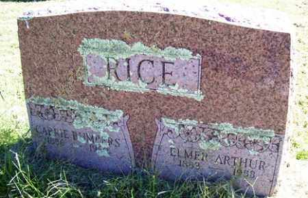 RICE, CARRIE - Franklin County, Arkansas | CARRIE RICE - Arkansas Gravestone Photos