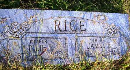 RAINWATER RICE, LILLIE FRANCES - Franklin County, Arkansas | LILLIE FRANCES RAINWATER RICE - Arkansas Gravestone Photos