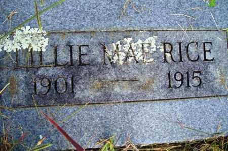 RICE, LILLIE MAE - Franklin County, Arkansas | LILLIE MAE RICE - Arkansas Gravestone Photos