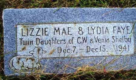 SHELBY, LYDIA FAYE - Franklin County, Arkansas | LYDIA FAYE SHELBY - Arkansas Gravestone Photos