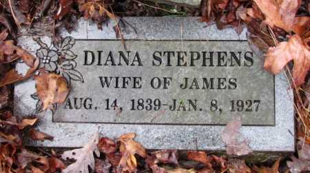 STEPHENS, DIANA - Franklin County, Arkansas | DIANA STEPHENS - Arkansas Gravestone Photos