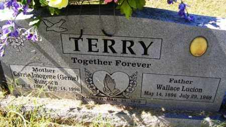 TERRY, WALLACE LUCION - Franklin County, Arkansas | WALLACE LUCION TERRY - Arkansas Gravestone Photos