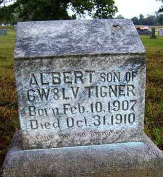 TIGNER, ALBERT - Franklin County, Arkansas | ALBERT TIGNER - Arkansas Gravestone Photos