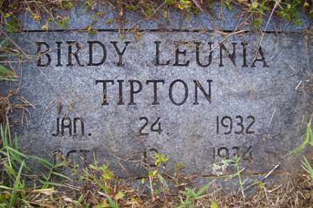 TIPTON, BIRDY LEUNIA - Franklin County, Arkansas | BIRDY LEUNIA TIPTON - Arkansas Gravestone Photos