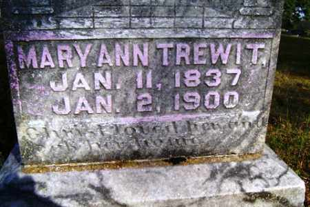 TREWIT, MARY ANN - Franklin County, Arkansas | MARY ANN TREWIT - Arkansas Gravestone Photos