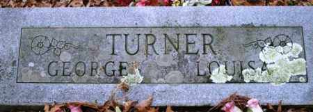 TURNER, GEORGE - Franklin County, Arkansas | GEORGE TURNER - Arkansas Gravestone Photos