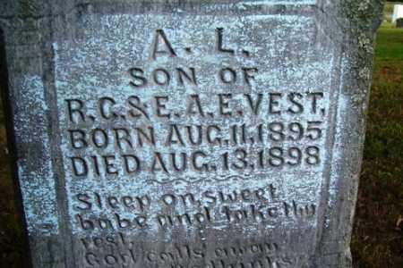 VEST, A. L. - Franklin County, Arkansas | A. L. VEST - Arkansas Gravestone Photos