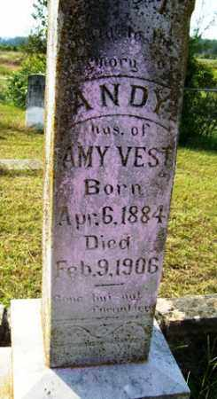 VEST, ANDY - Franklin County, Arkansas | ANDY VEST - Arkansas Gravestone Photos