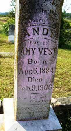 VEST, ANDY - Franklin County, Arkansas | ANDY VEST - Arkansas Gravestone Photos