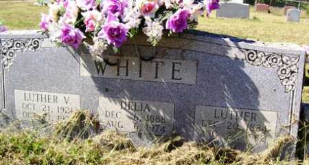 WHITE, LUTHER V. - Franklin County, Arkansas | LUTHER V. WHITE - Arkansas Gravestone Photos