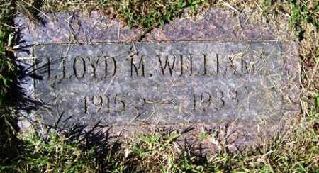 WILLIAMS, LLOYD M. - Franklin County, Arkansas | LLOYD M. WILLIAMS - Arkansas Gravestone Photos