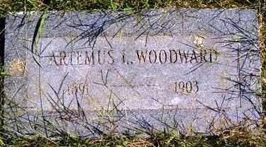 WOODWARD, ARTEMUS L. - Franklin County, Arkansas | ARTEMUS L. WOODWARD - Arkansas Gravestone Photos