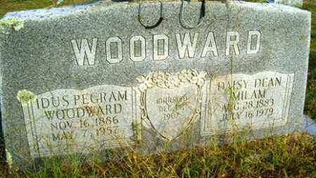 WOODWARD, IDUS PEGRAM - Franklin County, Arkansas | IDUS PEGRAM WOODWARD - Arkansas Gravestone Photos