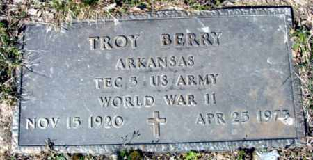 BERRY (VETERAN WWII), TROY - Fulton County, Arkansas | TROY BERRY (VETERAN WWII) - Arkansas Gravestone Photos