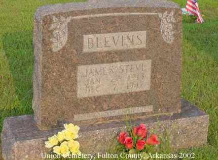BLEVINS, JAMES STEVE - Fulton County, Arkansas | JAMES STEVE BLEVINS - Arkansas Gravestone Photos