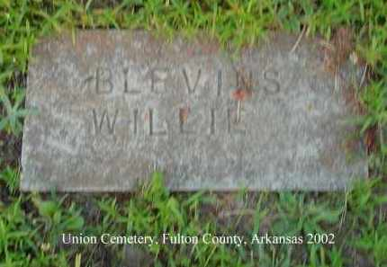 BLEVINS, WILLIE - Fulton County, Arkansas | WILLIE BLEVINS - Arkansas Gravestone Photos