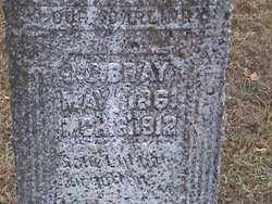 BRAY, JAMES CALVIN - Fulton County, Arkansas | JAMES CALVIN BRAY - Arkansas Gravestone Photos