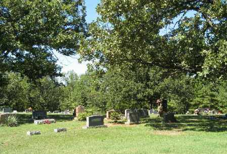 *BRONAUGH CEMETERY OVERVIEW,  - Fulton County, Arkansas |  *BRONAUGH CEMETERY OVERVIEW - Arkansas Gravestone Photos