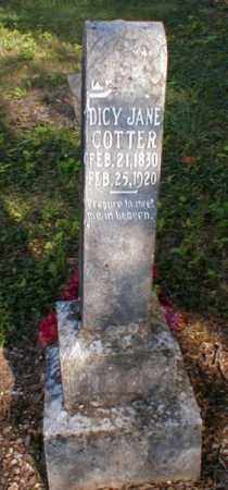 BEALS COTTER, DICY JANE - Fulton County, Arkansas | DICY JANE BEALS COTTER - Arkansas Gravestone Photos