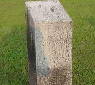 ROWDEN FERGUSON, FANNIE C. - Fulton County, Arkansas | FANNIE C. ROWDEN FERGUSON - Arkansas Gravestone Photos