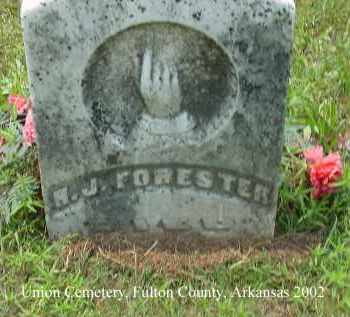 FORESTER, H. J. - Fulton County, Arkansas | H. J. FORESTER - Arkansas Gravestone Photos