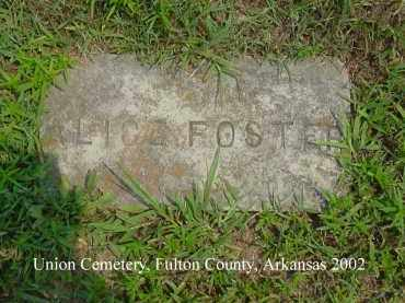 FOSTER, ALICE - Fulton County, Arkansas | ALICE FOSTER - Arkansas Gravestone Photos