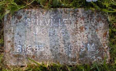 JOHNS, GRINVILLE D. - Fulton County, Arkansas | GRINVILLE D. JOHNS - Arkansas Gravestone Photos